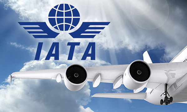 Küresel havacılık bu yıl yüzde 66 daralacak