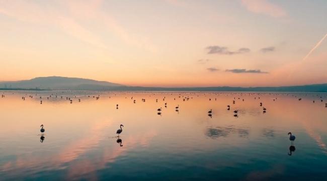 Gediz Deltası Dünya Doğa Mirası olma yolunda